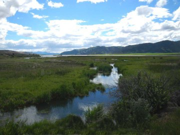 8-Soda Creek